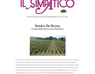 IL SIMPATICO-MELOGRANO.IT - SANDRO DE BRUNO